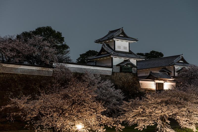 2018.04.02 金沢城 夜桜 1