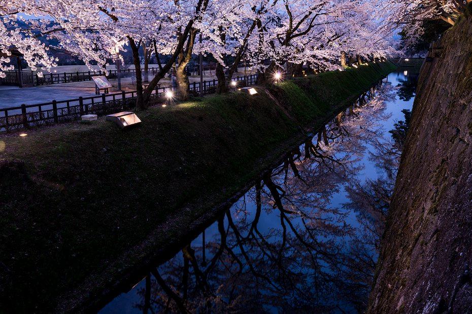 2018.04.03 金沢城 夜桜 1
