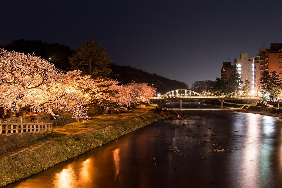 2018.04.03 浅野川 夜桜 1