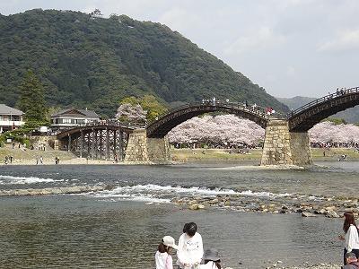 川岸から錦帯橋