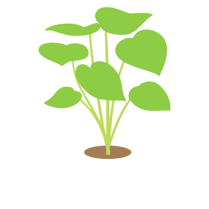 m_f_plant50.png