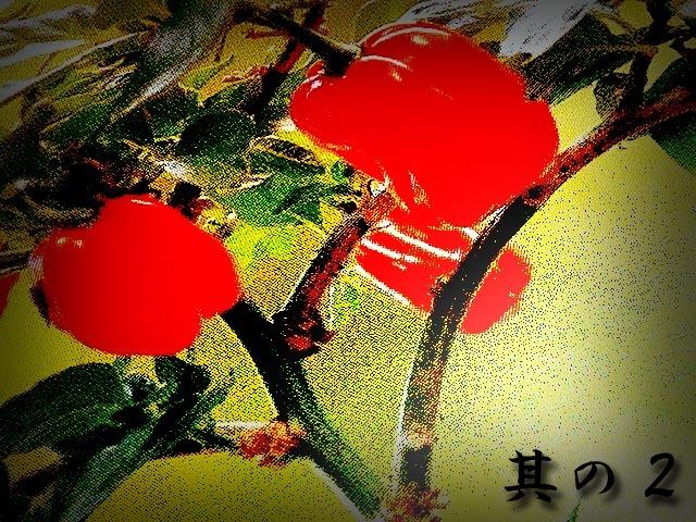 habanero_red_Profit_2_01.jpg