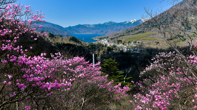 奥日光早春の美景