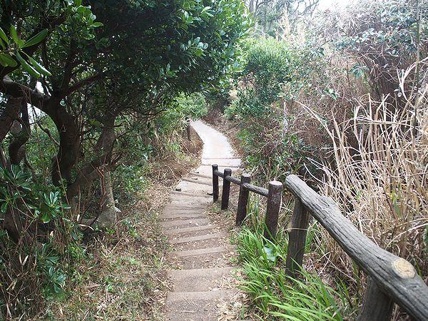 馬の背洞門への遊歩道