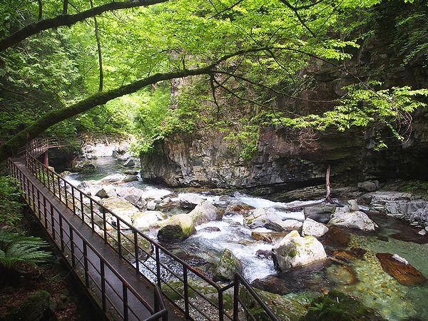 三ツ滝コース