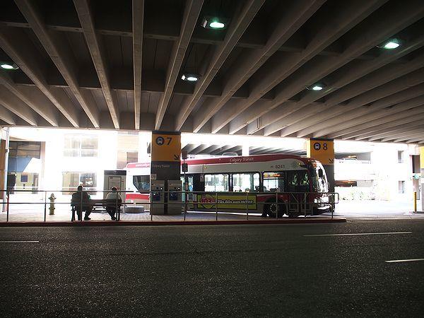 バス乗り場@カルガリー国際空港