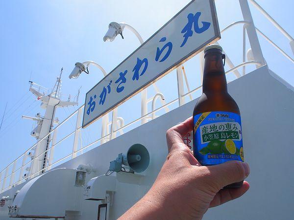 島レモンチューハイで乾杯