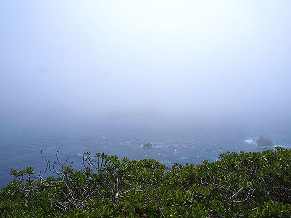 海は霧の中
