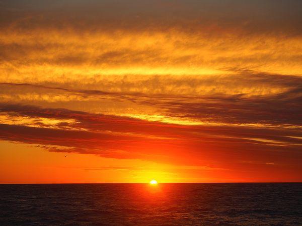 朝日@アザラシの見える宿 民宿スコトン岬