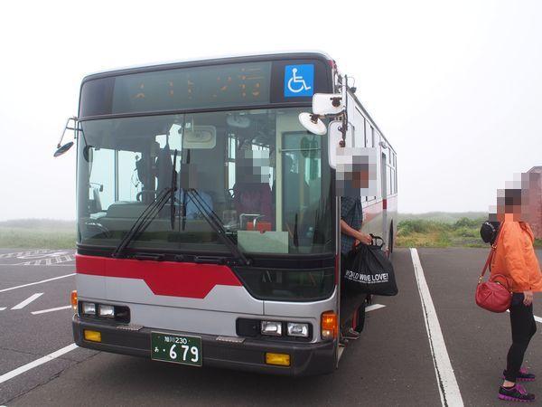 礼文島の路線バス