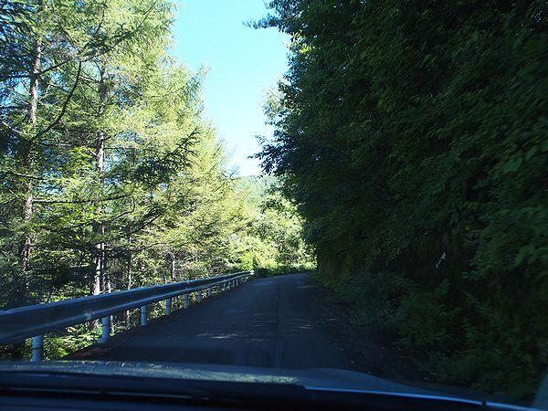 黒川牧場への林道