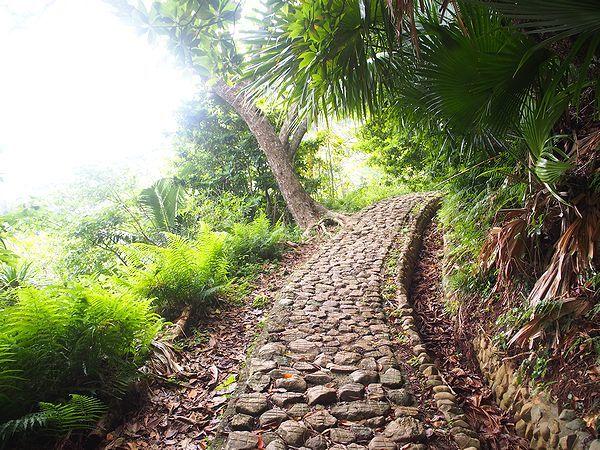 中山峠への登り坂