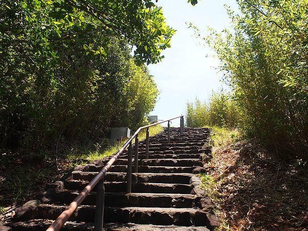 大神山公園への道