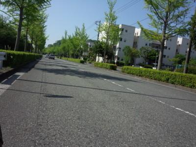 photo_colnago_enosima_sakaigawa_0501_7_2018_0501.jpg