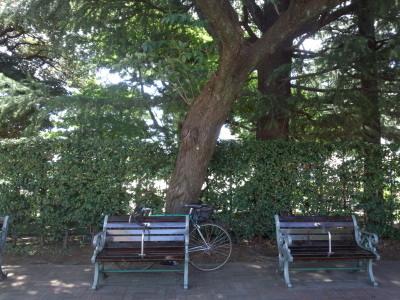 都内公園巡り