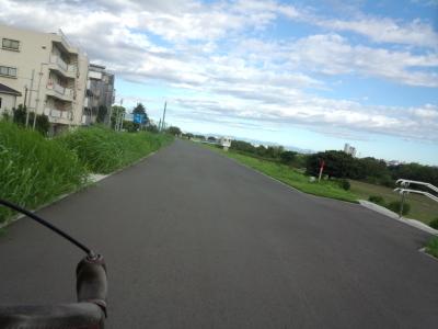 photo_colnago_tonaikouenmegutri_0817_2_2018_0817.jpg