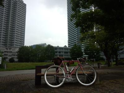photo_derosa_asaran_yokohamalongvergon_10_2018_0725.jpg