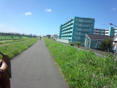 ゆるポタ多摩川