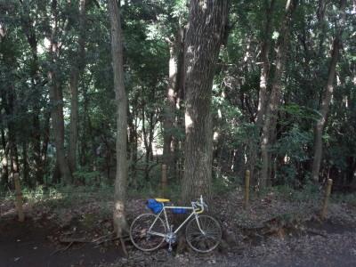 ゼウスで行く四季の森公園