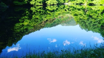 【 水鏡 The Mizukagami・Mirror of Water 】②