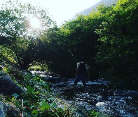 渓谷の上流へ③