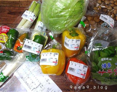 お野菜ゲット日 1