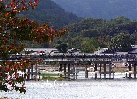 京都 嵐山 です