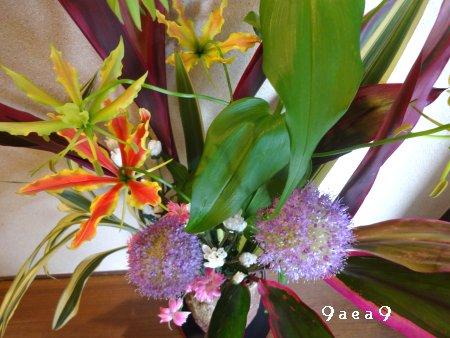 先日感動したブログの影響を受けて床の間の生け花写真を撮ってみた4