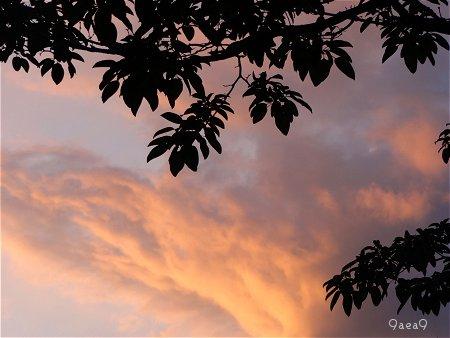 太陽 空 雲 2