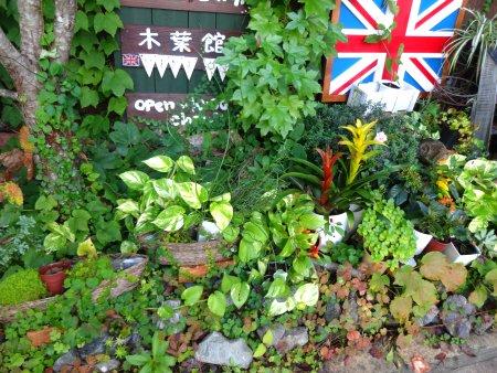 京都 丹波 木葉館 1