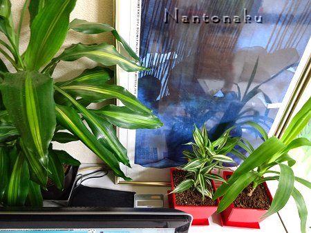 NANTONAKU パソコンの 裏側