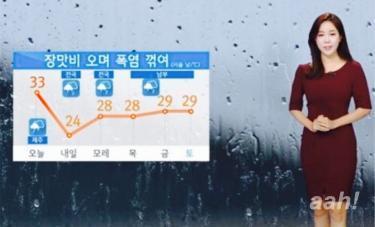 ついに梅雨到来。