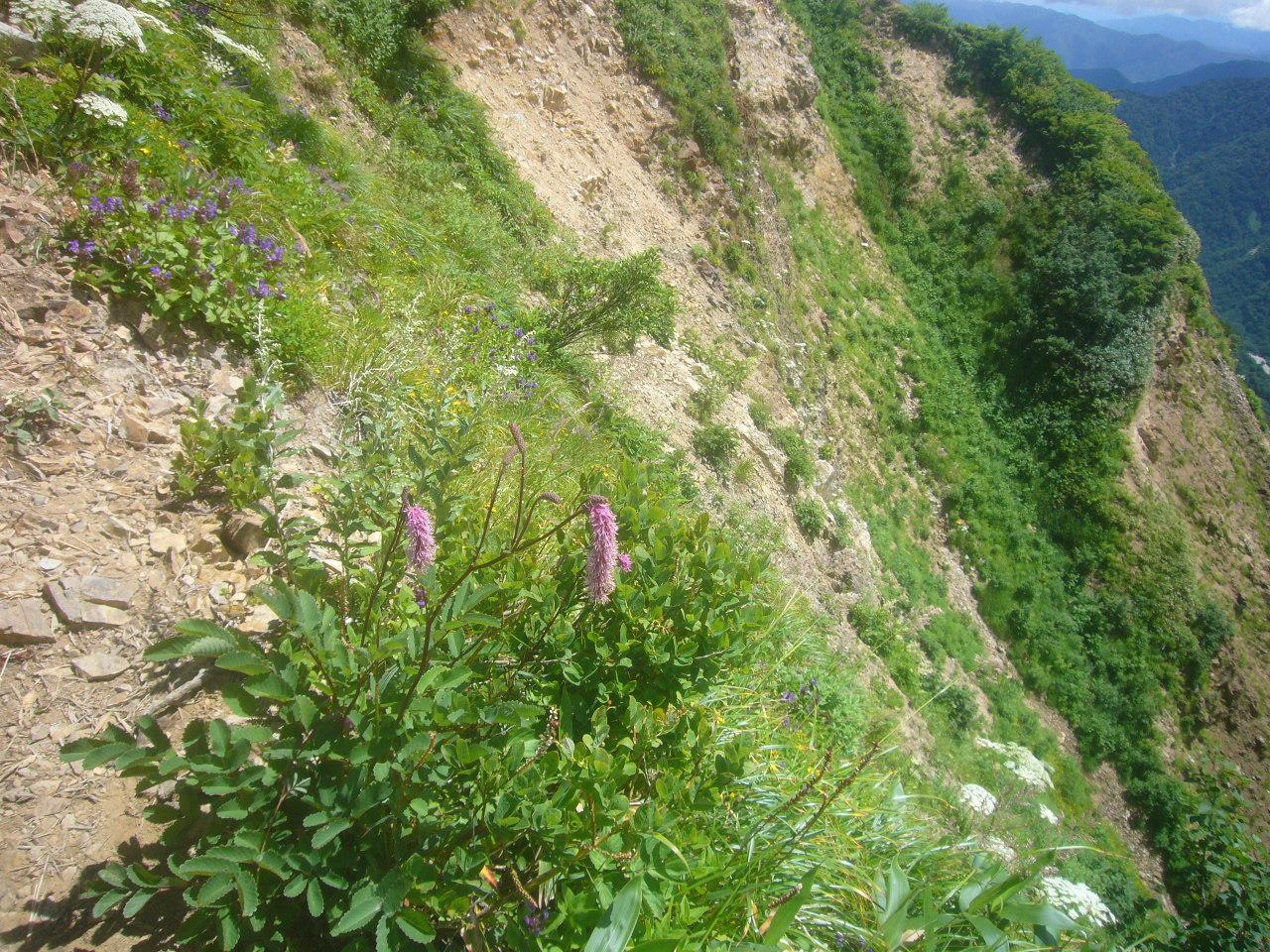 危険な稜線 H30.7.23