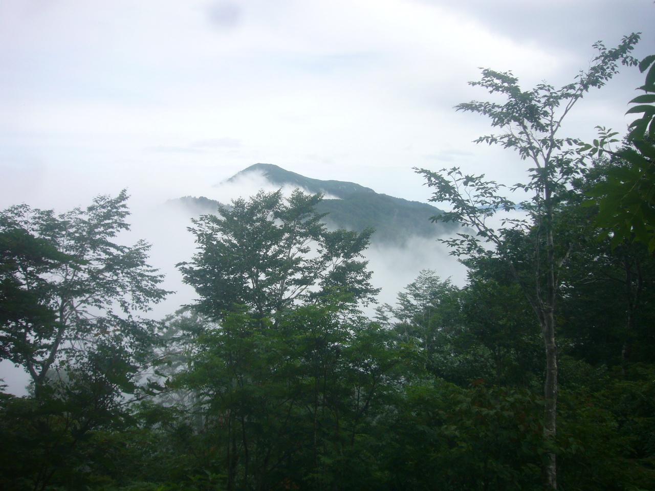赤兎登山道から大長山 H30.7.28