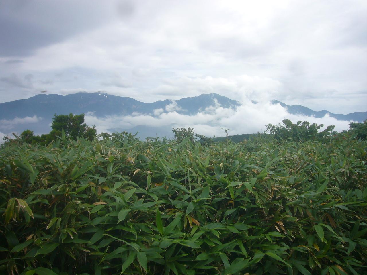 赤兎頂上から白山連峰 H30.7.28