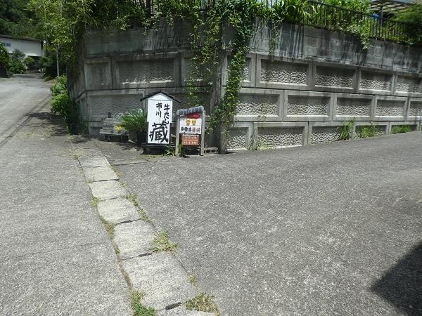 P1370734.jpg