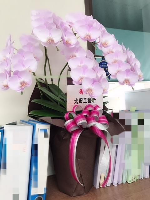 お花!太田工務所さまより