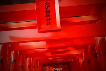 entry_img_5050.jpg