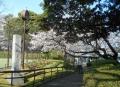 山手公園(テニスコート脇)
