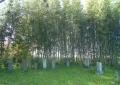 十玉院墓地