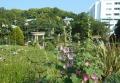 バラとカスケードの庭から見る洋風四阿