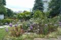 アリウム(イタリア山庭園)