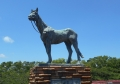 幻の馬「トキノミノル号」