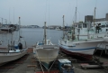 三崎港(奥から見た景色)