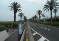 海岸通り(国道16号)