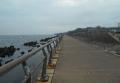 海辺の道(向こうは走水)