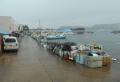 鴨居漁港①