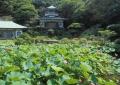 記主庭園と大聖閣