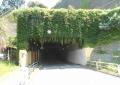小坪海岸トンネル(逗子側)