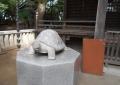 拝殿前の亀①